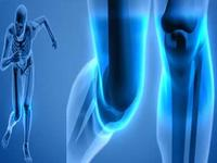 Business Directory & Companies Listings Best Knee Surgeon in India in Bengaluru KA