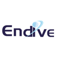 Endive Software - Other Business Services in Florida, USA