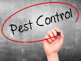 Business Directory & Companies Listings Pest Control Empire Melbourne in Keilor VIC