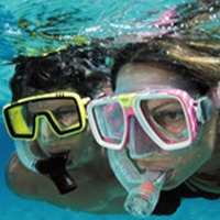 Business Directory & Companies Listings Marathon Snorkeling Company in Marathon FL