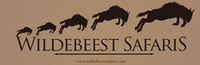 Business Directory & Companies Listings Wildebeest Safaris Ltd in Nairobi Nairobi