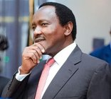 Business Directory & Companies Listings Kalonzo Musyoka in Nairobi Nairobi