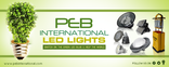 Peb international