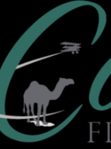 Camel Financial, Inc.