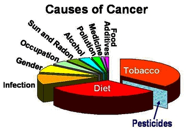What do you think really causes cancer?